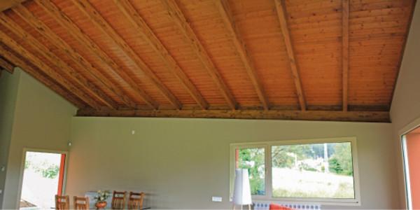 vista panelado techo